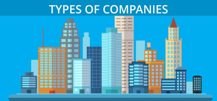 Bước 1: Chọn loại hình công ty