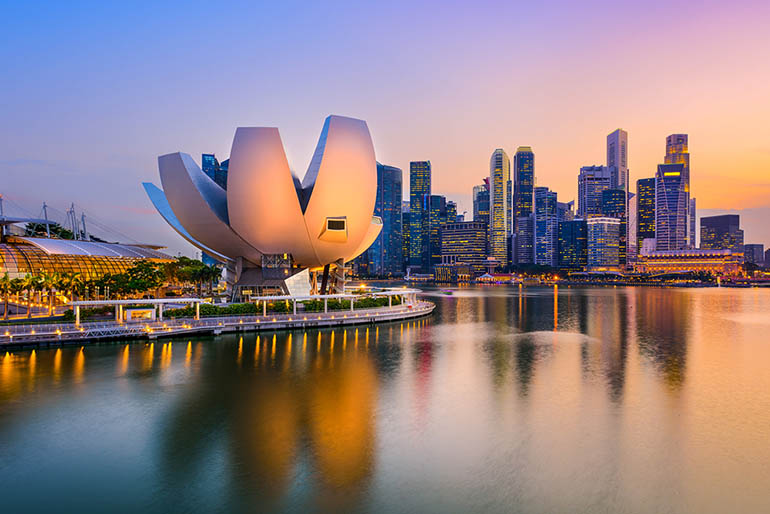 Registration Options in Singapore for Foreign Companies