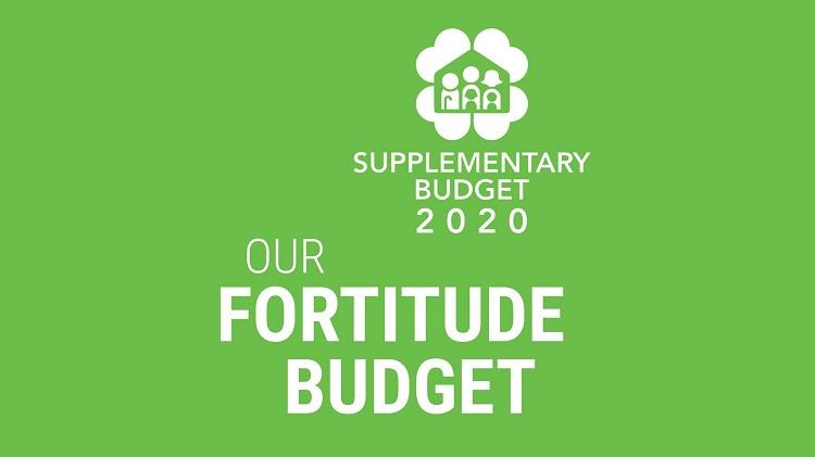 Ngân sách Fortitude Budget